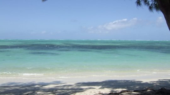 Mauritius: A Long Way from Home