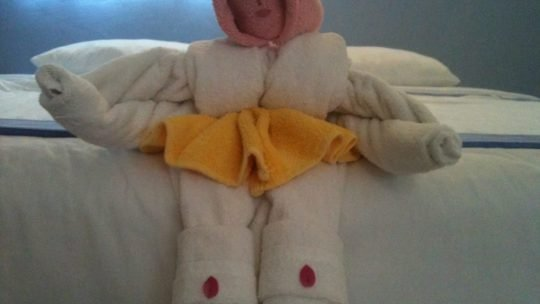 Awesome or Creepy? Towel Origami