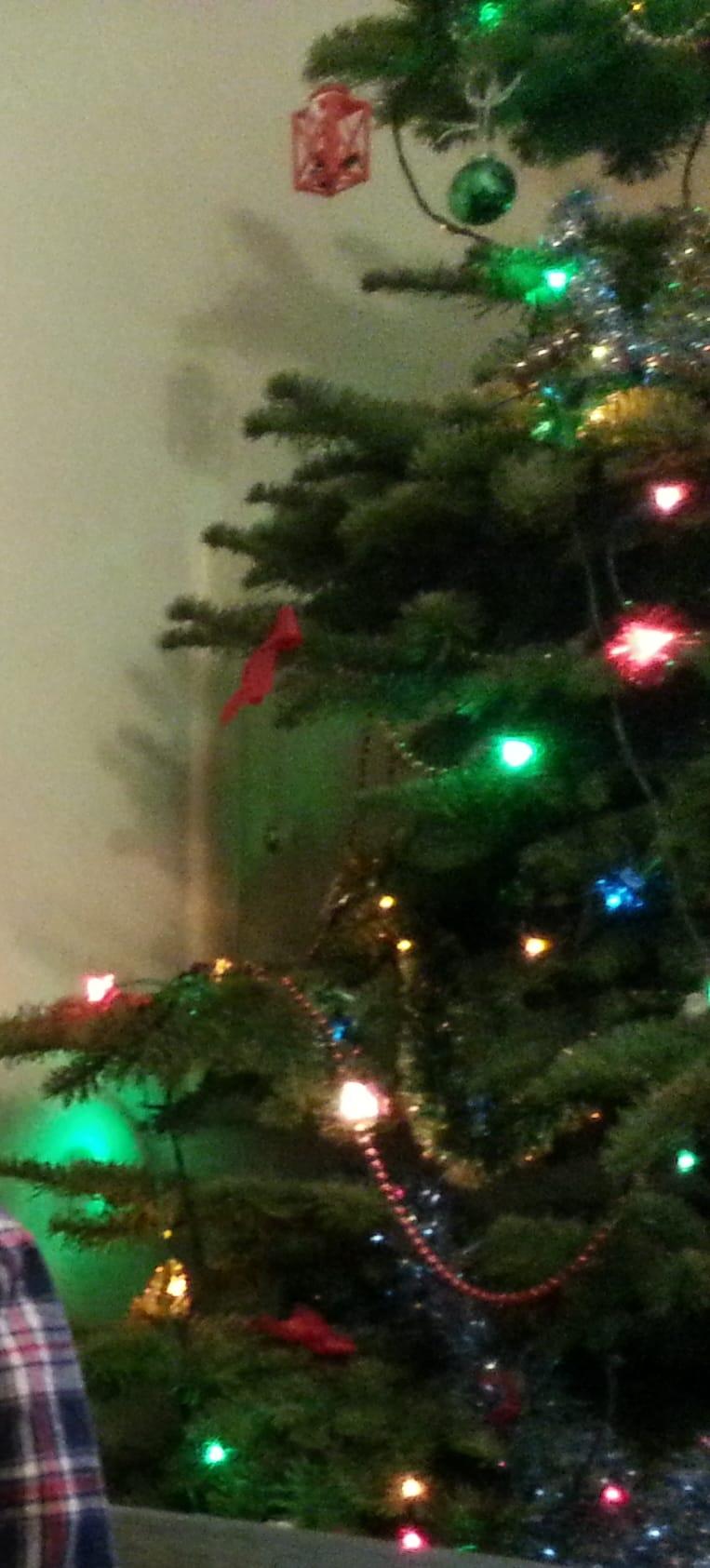 christmas tre lights