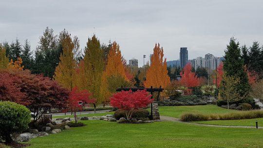 Vancouver – A Fresh Start